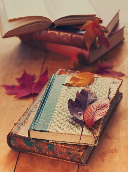 books_fall